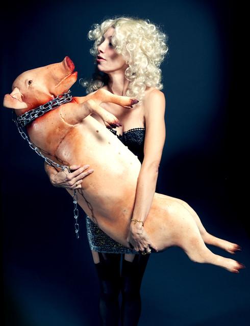 1 hanging pig.jpg