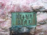 beanes & rice.jpg