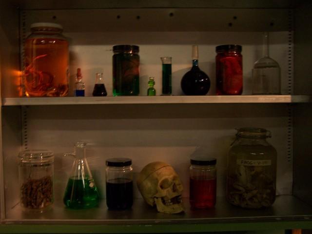 beyond - skull shelf