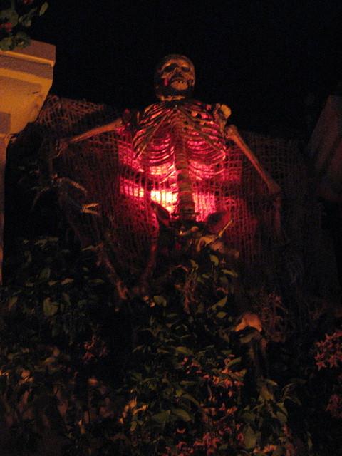 skeleton haunt.jpg