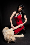 golden lab dog - alex-0320.jpg