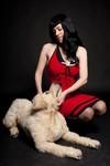 golden lab dog - alex _1400.jpg