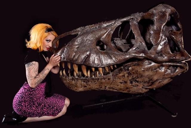 12 dec laura socket_T_rex_skull_6_12000.jpg
