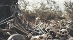 dry bones Picture 60.png