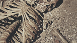 dry bones  Picture 66.png
