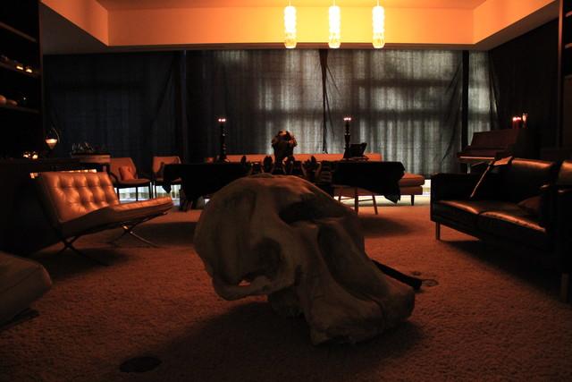 Mastodon skull for the band Mastodon
