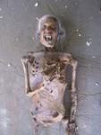 vampire mummy 28
