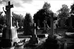 choice -cemetery.jpg