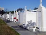 choice  graves1.jpg
