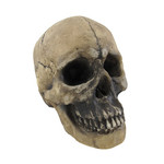 skull de mortius