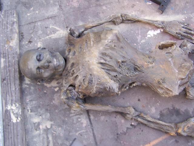 mummy 0.JPG