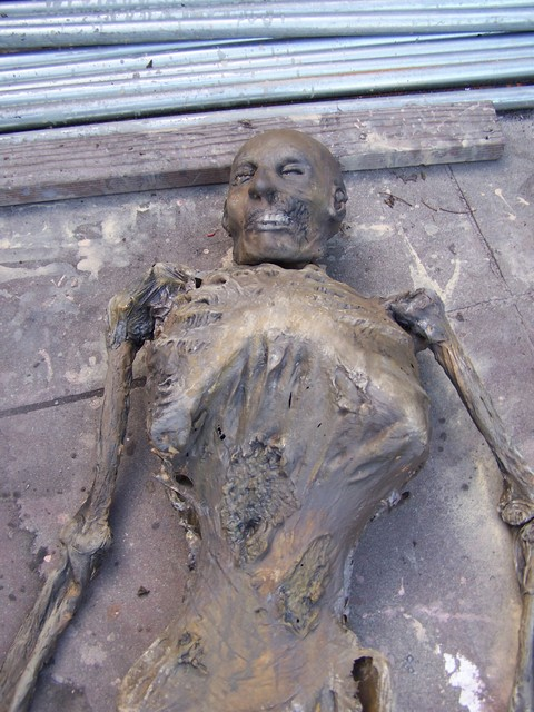 mummy 938.JPG