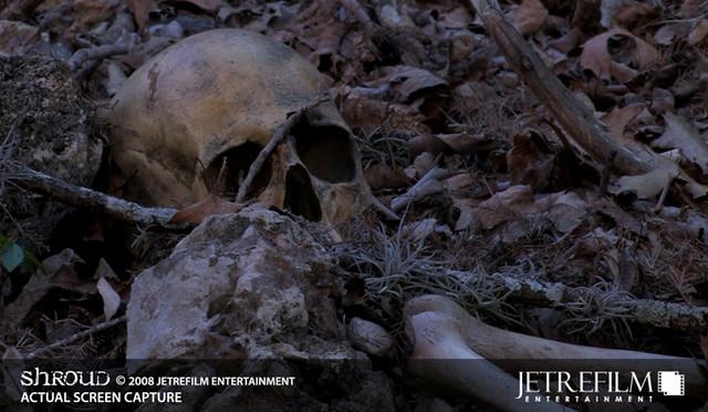 Museum Quality Gunshot Skull $45.jpg