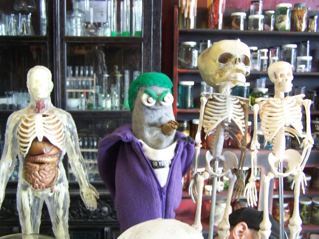 puppet skeletons 7.JPG