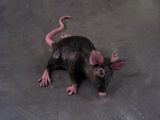 painted mice 70.JPG