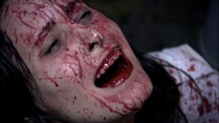 Cari bloody mouth scream 128a shelter.jpg