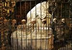 yr_creating_catacombs_for_a_newman_adventure_2_444x304.jpg