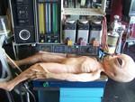 alien autopsy set 6