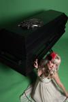 black crested casket  67.jpg