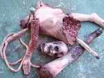 female mutilation combo 061048.JPG