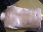 joe torso 55