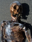 Burnt Riley Skeleton 13.JPG