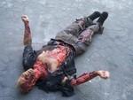 half anatomical bomb morley