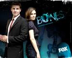 bones 3.jpg