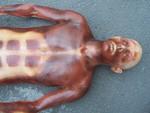 anatomic 2 14