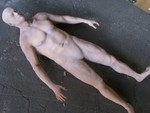 anatomical male Jack body 84.JPG