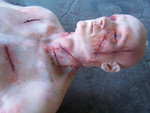 cut wound jack 26.JPG