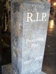 RIP Processing fees 81.JPG