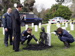 bones with military headstones d_o.jpg