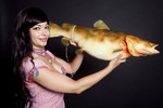 catfish 0.jpg