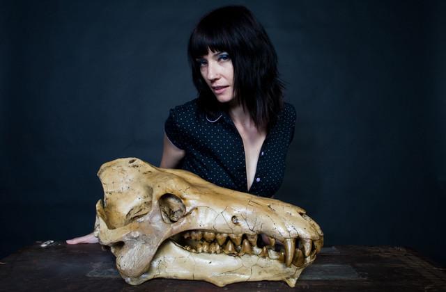 archaetherium skull 62.jpg