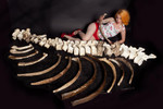 Giant Sloth Spine and ribs 61 4000.jpg