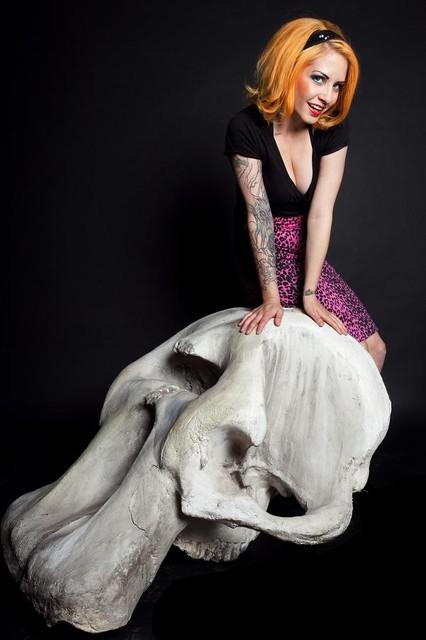 Mastodon Skull 7 700.jpg