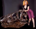 socket T rex skull 2 12000.jpg