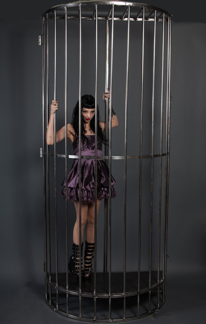 gogo cage hi rez-2856.jpg