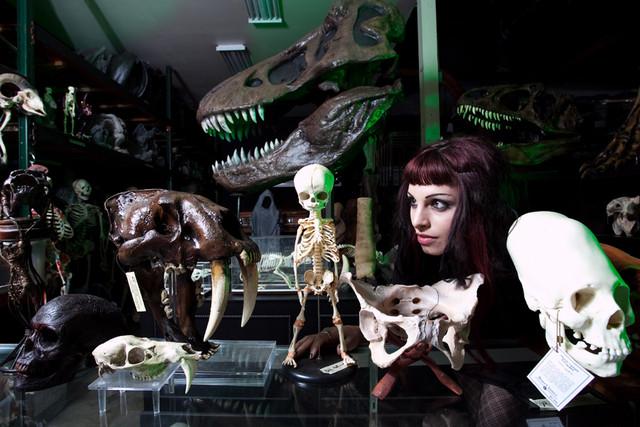 unusual skulls 39.jpg