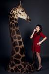 giraffe   2501.jpg