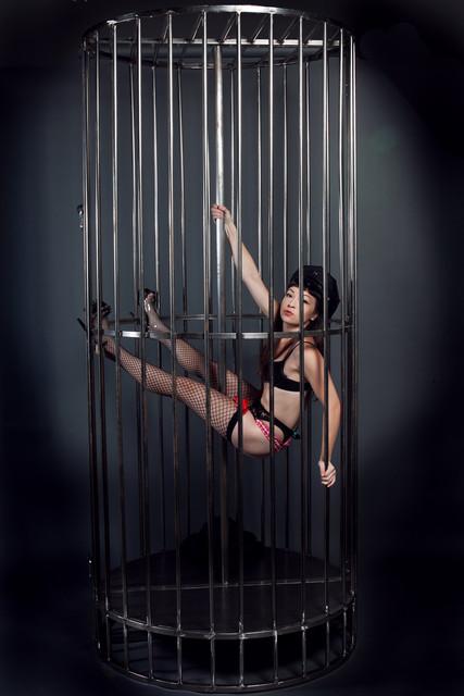 gogo cage hi rez -2796.jpg