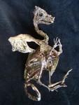 mummified baby dragon