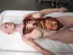 female autopsy body 67.JPG