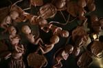fetuses 06.JPG