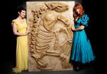 allodesmus fossil 103.jpg