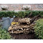 26 inch dragon skull