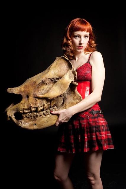 aphelops rhino skull  400.jpg