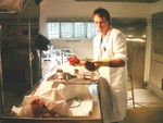 Kevin Nealon Morgue Hearts 9