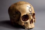 alchemy skull 01 35r 120s
